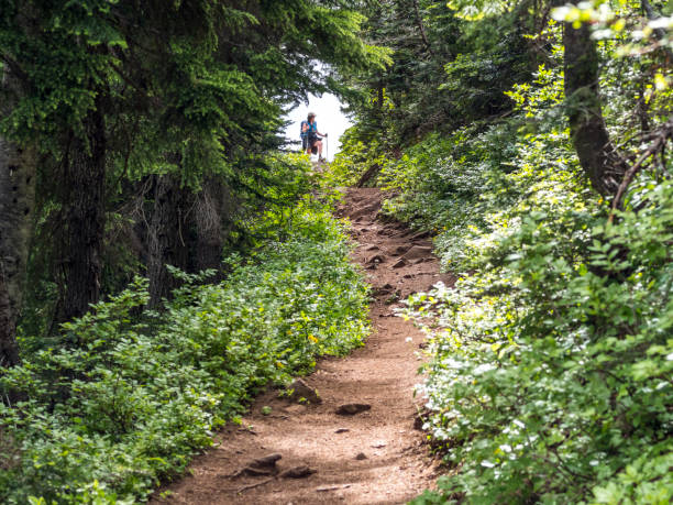 Senior Woman on Hiking Trail Western Forest Oregon Iron Mountain A trail on Iron Mountain in Western Oregon looking towards an open area with a senior woman hiker visible. The area is steep, rugged and beautiful. steep stock pictures, royalty-free photos & images