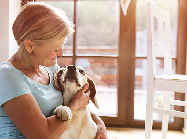 Senior woman petting her hound dog Senior woman with her dog inside of her house. alternative therapy stock pictures, royalty-free photos & images