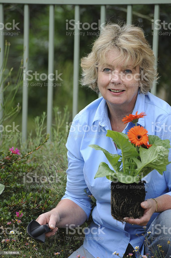 Senior Woman Planting royalty-free stock photo