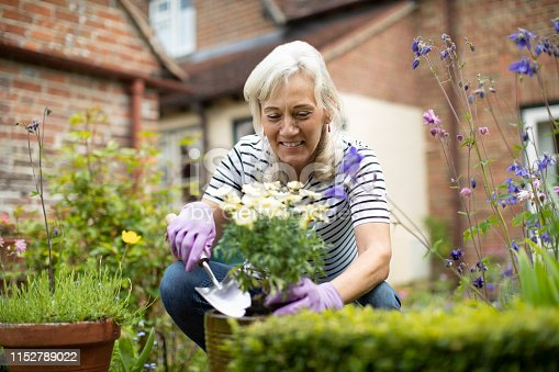 Senior Woman Potting Plant In Garden At Home