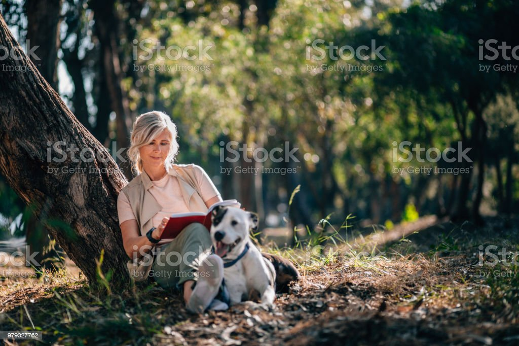 Senior woman relaxing in nature with book and pet dog stock photo