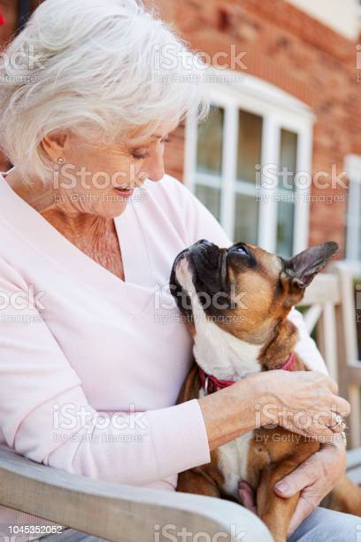 Senior woman sitting on bench with pet french bulldog in assisted picture id1045352052?b=1&k=6&m=1045352052&s=612x612&h=u7tltmrvitioxul93o4zktpnb9e1fyrly7q3umzxsl0=