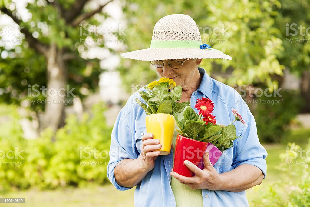 Senior woman smelling flowers royalty-free stock photo