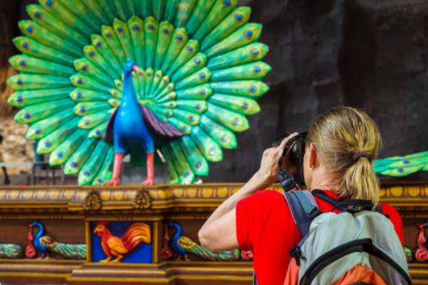 Senior woman taking a photo of peacock statue in Batu Caves in Kuala Lumpur, Malaysia Senior woman looking at colorful statue of peacock in Batu Cave temple that is one of the most renowned Hinde shrines located outside of India which is dedicated to the Lord Murugan. It is in Kuala Luimpur, Malaysia, batu caves stock pictures, royalty-free photos & images