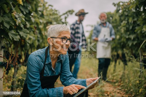 Older woman with digital tablet at plantation of fruit