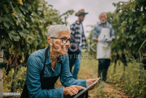 istock Senior woman using digital tablet 1058394334