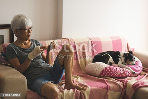 483426960istockphoto Senior woman using smartphone at home, next to her lazy dog 1133993844
