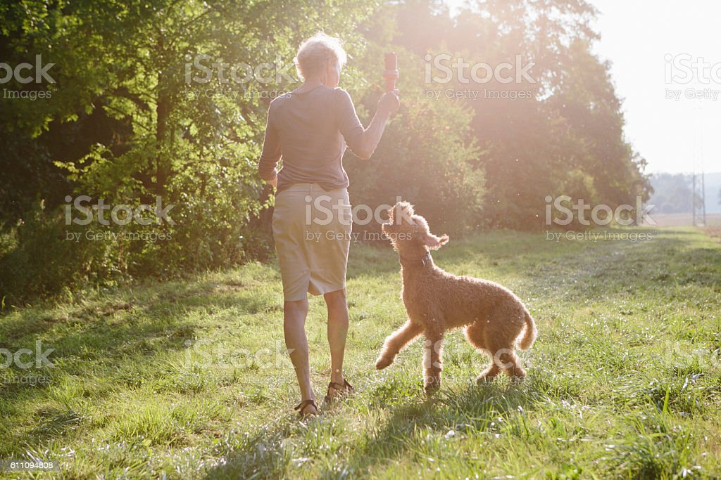 Senior woman walking with her dog between fields and forest stock photo