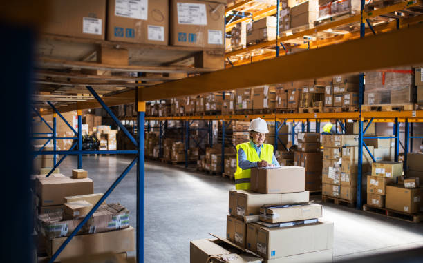 A senior woman warehouse worker or supervisor controlling stock. A senior woman worker or supervisor controlling stock in a warehouse. warehouse stock pictures, royalty-free photos & images