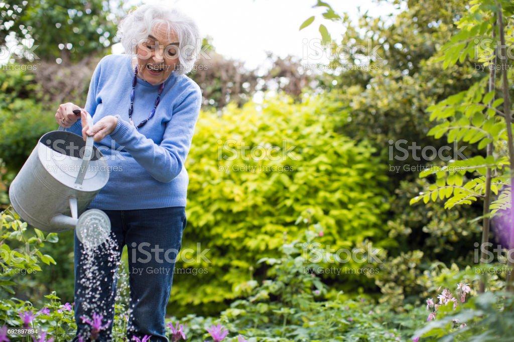 Haute femme arrosant des fleurs dans le jardin - Photo
