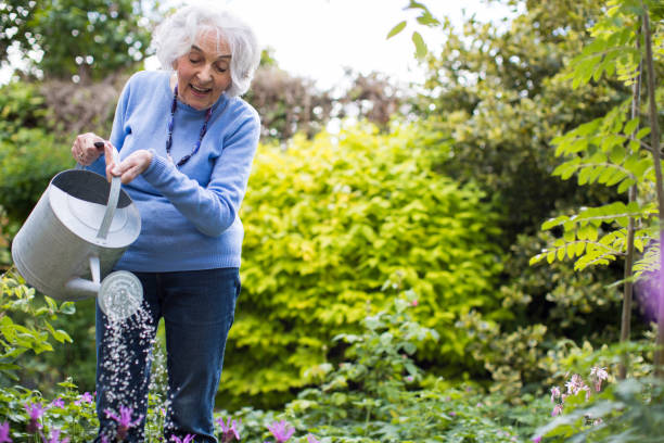 Senior Woman Watering Flowers In Garden stock photo