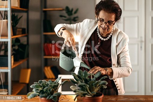 Old woman planting her flower in flower pot