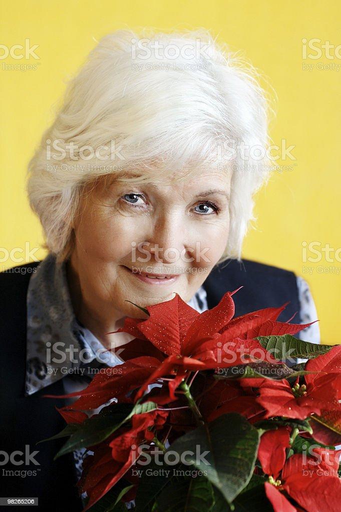 Senior woman with Christmas flower royalty-free stock photo