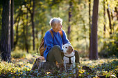 A happy senior woman with dog on a walk outdoors in forest, resting.