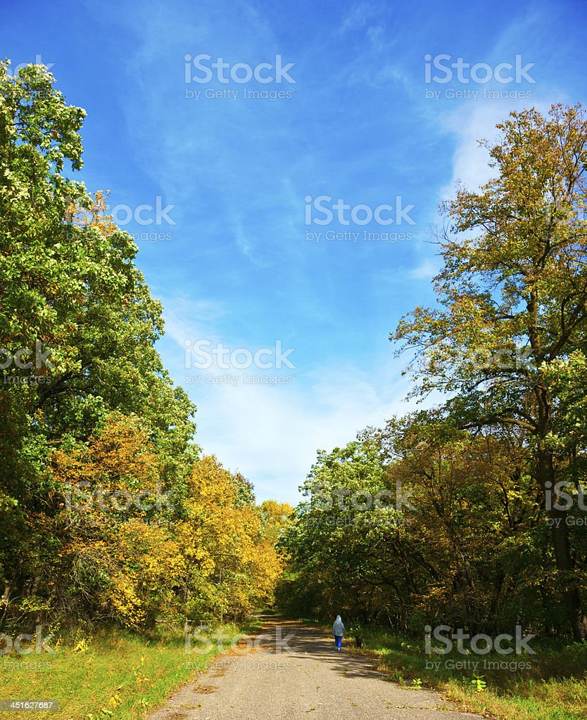 Senior Woman with Dog on Forest Road royalty-free stock photo