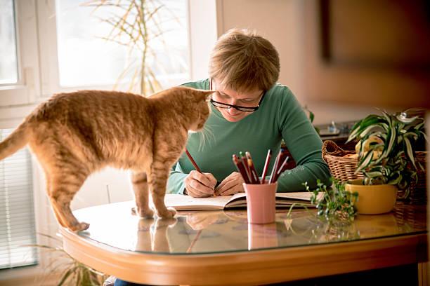 senior frau mit brillen malbuch bei home europa - katze zeichnen stock-fotos und bilder