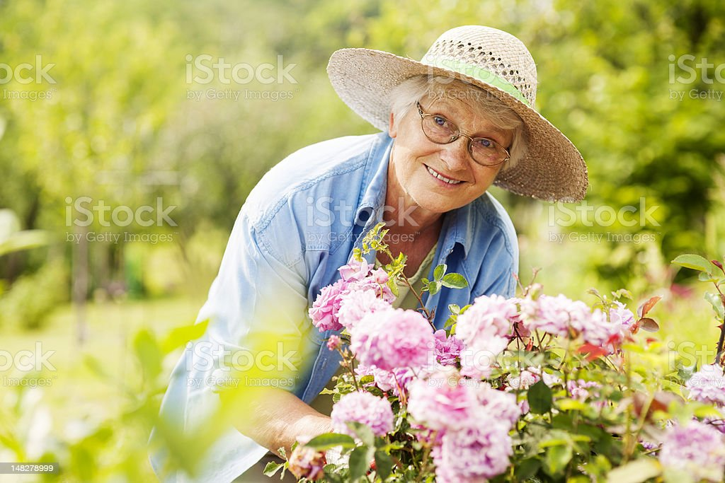 Senior woman with flowers in garden stock photo