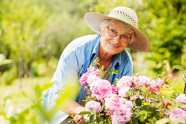 senior woman with flowers in garden - skära aktivitet bildbanksfoton och bilder