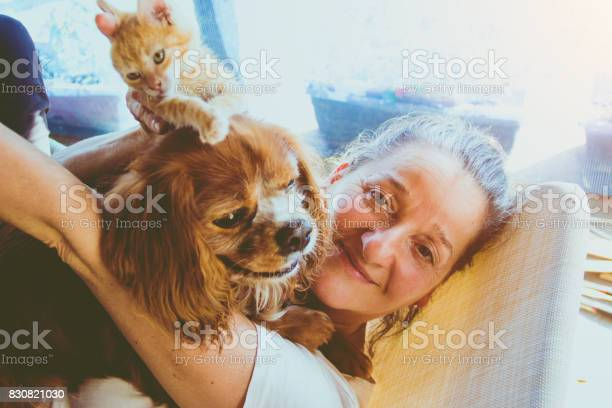 Senior woman with her cat at home relaxing picture id830821030?b=1&k=6&m=830821030&s=612x612&h=qg7tquafb6kxctwbh3uom8wde7bpp11fm9r74atcne8=