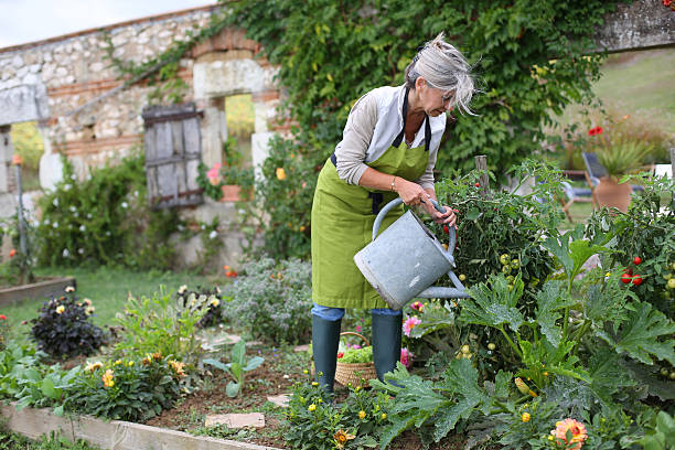 Senior woman with watering can in garden stock photo