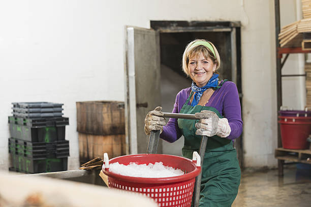 Senior woman working in food processing plant – Foto