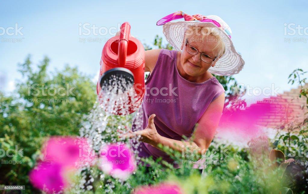 Haute femme qui travaillait dans son jardin avec une plantes. Loisirs et passe-temps - Photo
