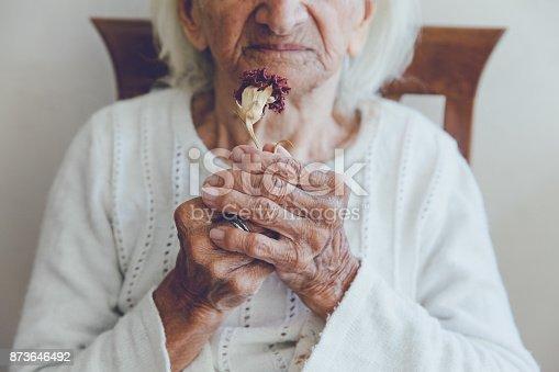 Senior Women and Dry Flower
