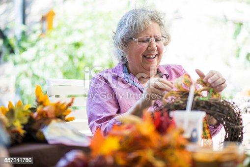 istock Senior women crafting 857241786