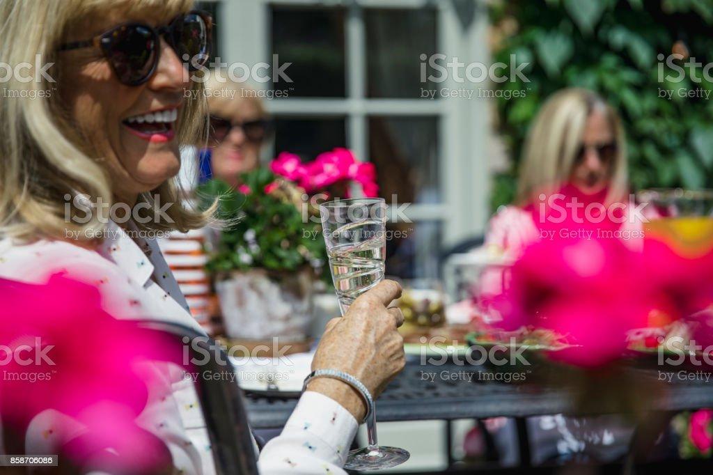 Senior Women Drinking Wine in the Garden stock photo