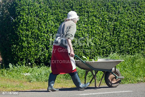 istock Senior worker pushing a wheelbarrow 671187950