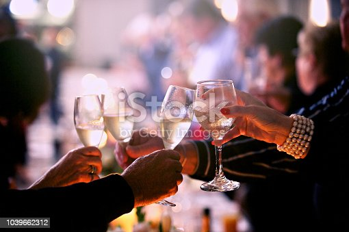 Seniors Celebratory Toast with Glasses of Champagne at a wedding Cape Town South Africa