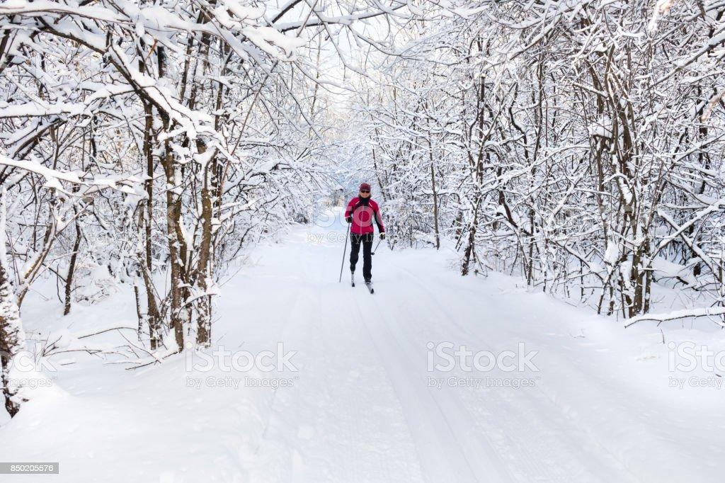 Seniors, cross-country skiing, woman stock photo
