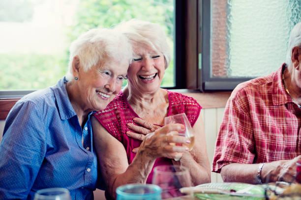 Senioren mit Abendessen und Unterhaltung im Sommerhaus. – Foto