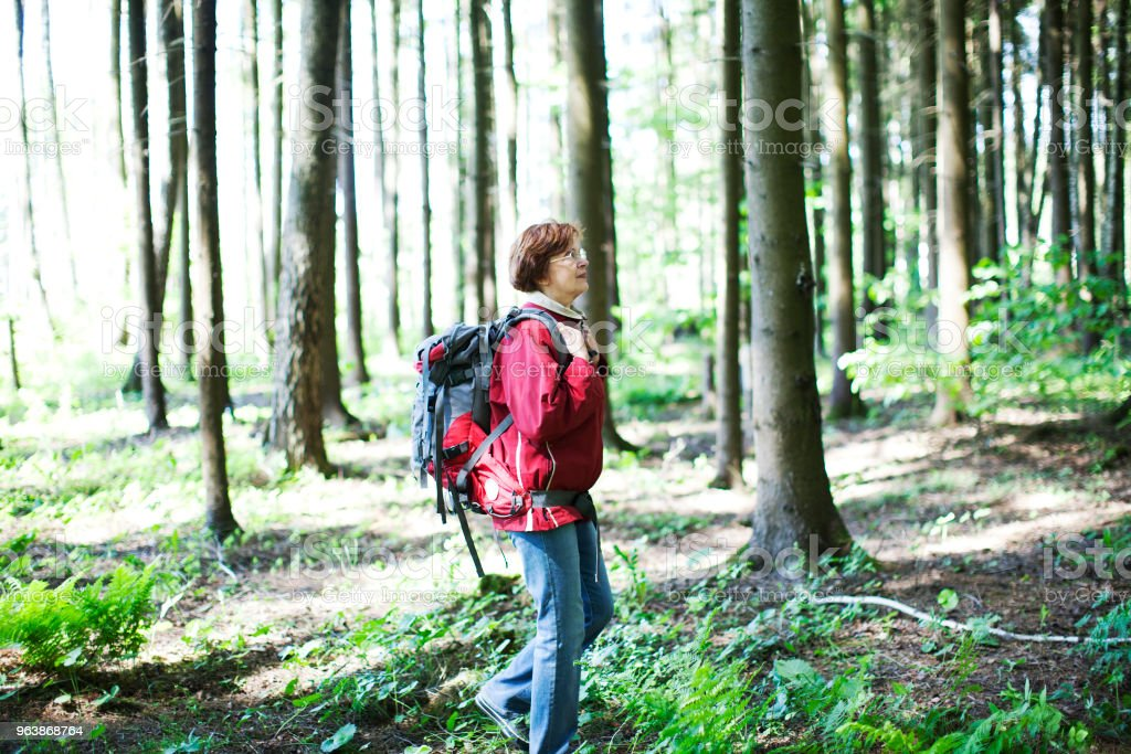 Seniors Hiking - Royalty-free 60-69 Years Stock Photo
