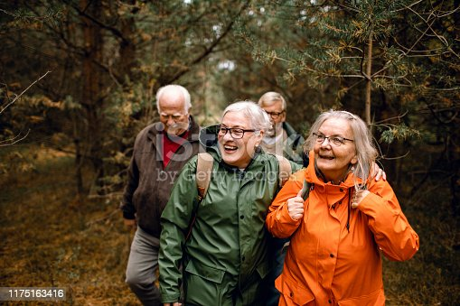 Close up of a group of seniors hiking through the forest