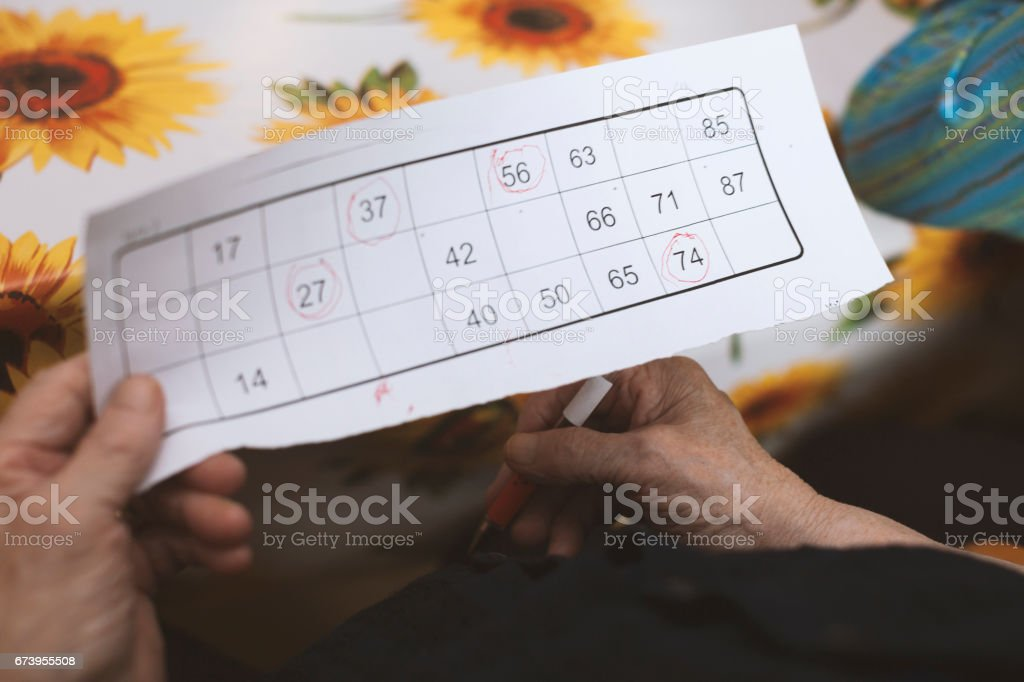 Seniors In The Nursing Home Playing Bingo For Relaxation royalty-free stock photo