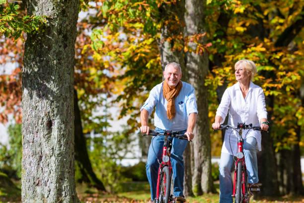 senioren auf tour im park mit fahrrädern - deutsche frauen stock-fotos und bilder