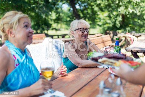 istock Seniors on holiday 856879962