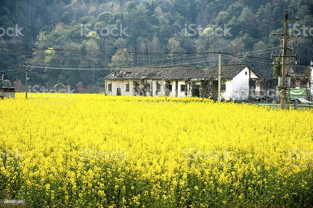 sense of  countryside in china stock photo