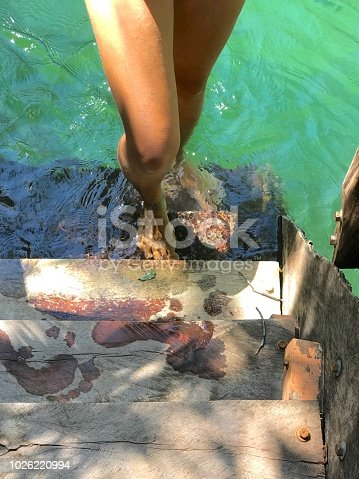 1088451256 istock photo Sensual woman legs with feet underwater on a deck Bonito MS 1026220994