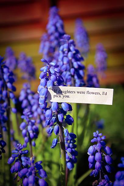 sentimental bluebells - elternzitate stock-fotos und bilder