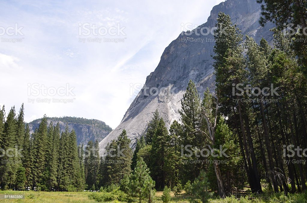 Sentinel Meadow, Yosemite National Park stock photo