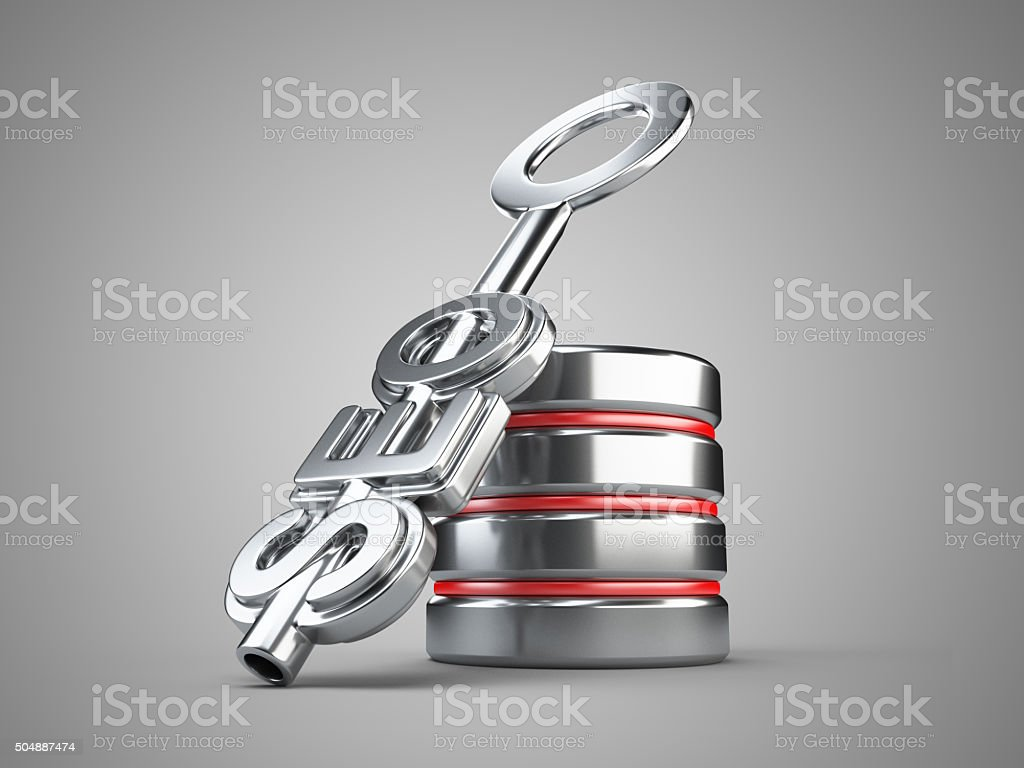 Seo concept with key and database sign stock photo