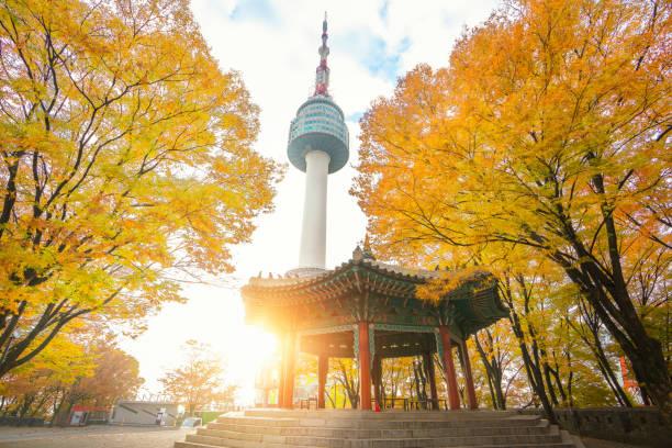 n seoul toren en chinees paviljoen in de herfst ochtend zonsopgang - korea stockfoto's en -beelden