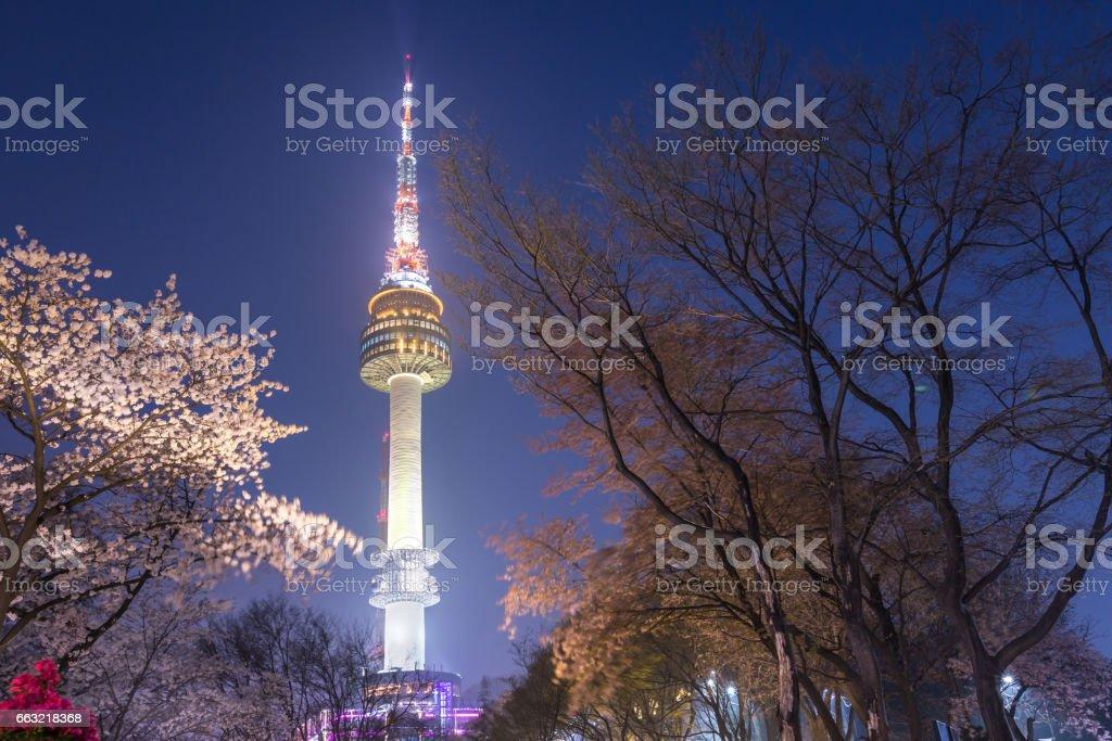 桜の木、韓国で春の夜景でソウル市のソウル タワー。 - Nソウルタワーのロイヤリティフリーストックフォト