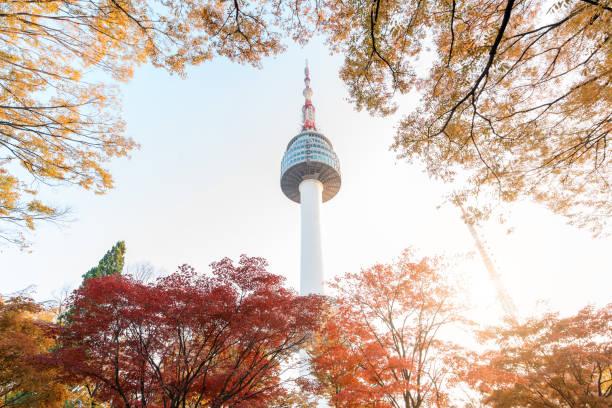 Seoul Tower mit gelben und roten Herbst-Ahornblättern am Namsan Berg in Südkorea.