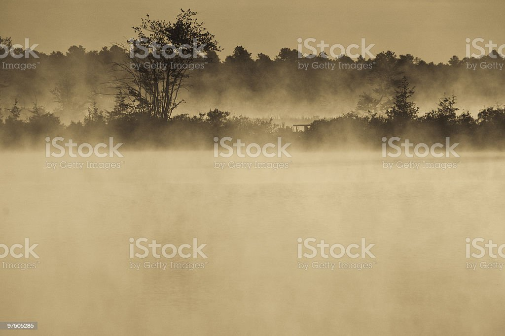 Sepia Bog with Morning Mist royalty-free stock photo