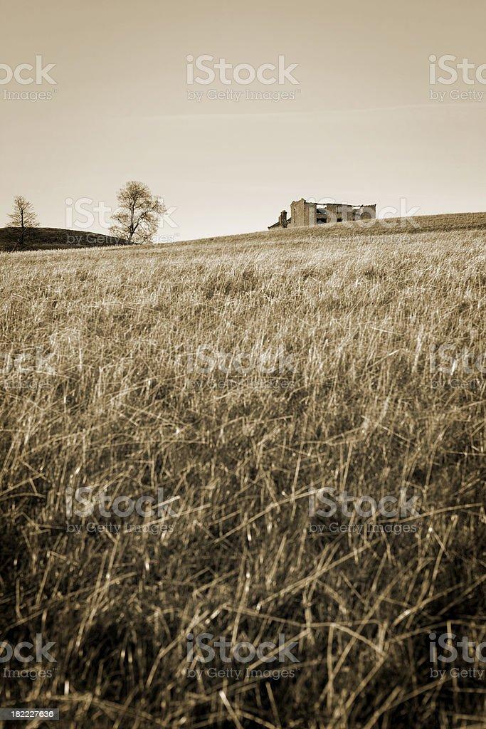 sepia landscape stock photo