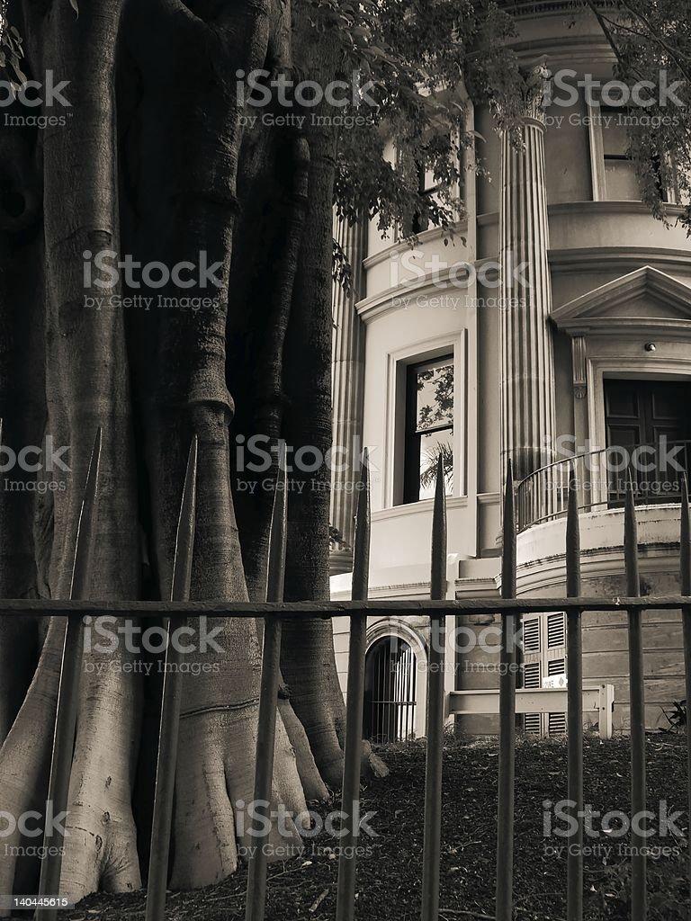 Sepia sanstone & tree royalty-free stock photo