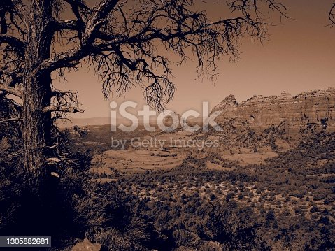 Sepia-toned red rocks outside Sedona, Arizona with bare tree in foreground framing long view; vintage, old west look